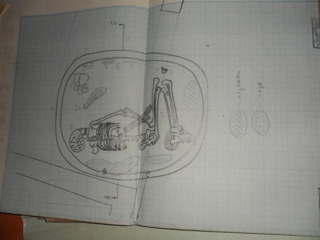 SAM_1799.JPG